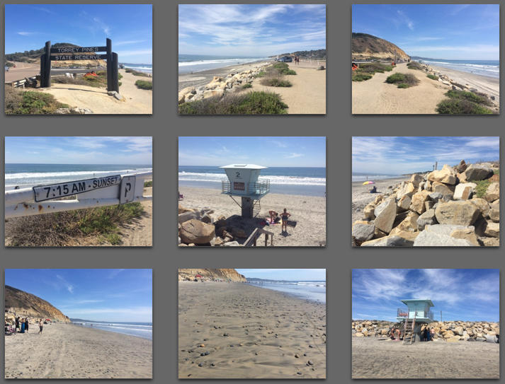 Sample Images for my Torrie Pines Beach Picture Book